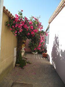 Der Eingang zu unserem Ferienhaus